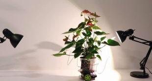 Горшок беспилотник для растений