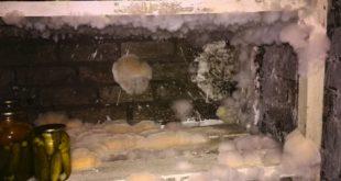 Как избавиться от грибка в подвале?